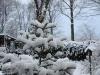 Winter_10_4