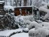 Winter_10_1